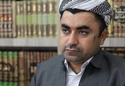 Kurdish theologian: Gülen's ideas best antidote to ISIL